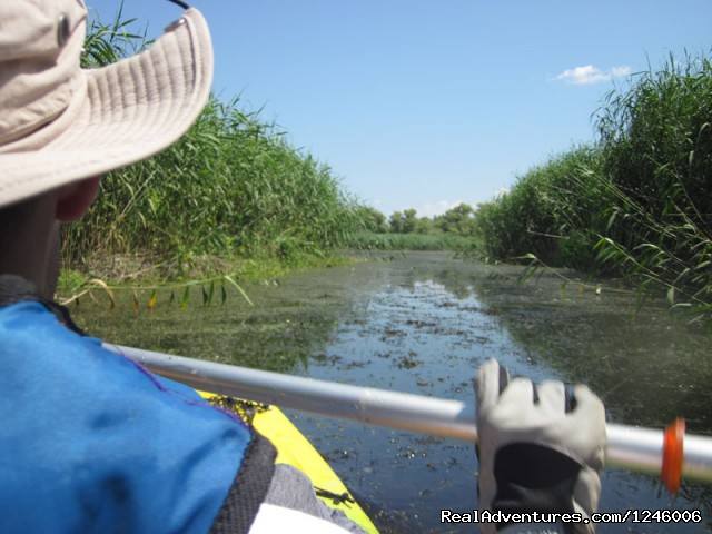 Small channels in Danube Delta - Danube Delta Kayak Tour, 3days/2nights, 2015