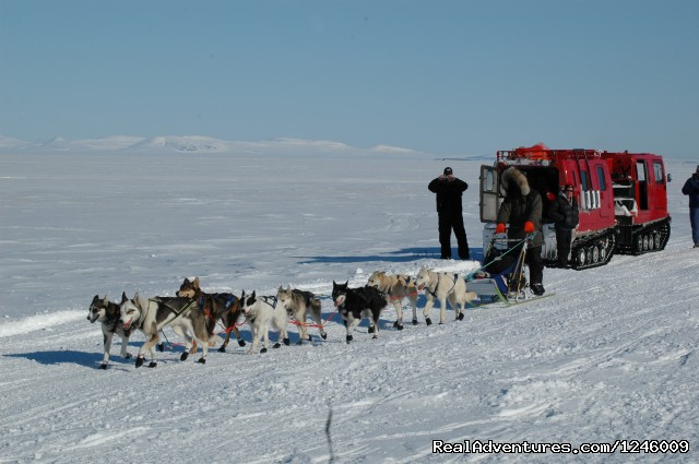 Snow Cat to Safety Roadhouse - Iditarod Sled Dog Race Tours & Arctic Adventure