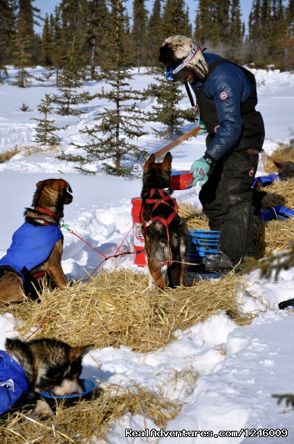 Lance Mackey at Cripple 2009 (#6 of 25) - Iditarod Sled Dog Race Tours & Arctic Adventure