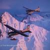 Iditarod Sled Dog Race Tours & Arctic Adventure Sky Trekking Alaska Ski Planes