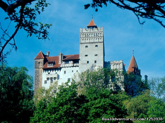Dracula's Castle (#4 of 9) - Count Dracula Tour