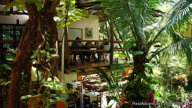 Learn Spanish in Playa Tamarindo - EF Education First