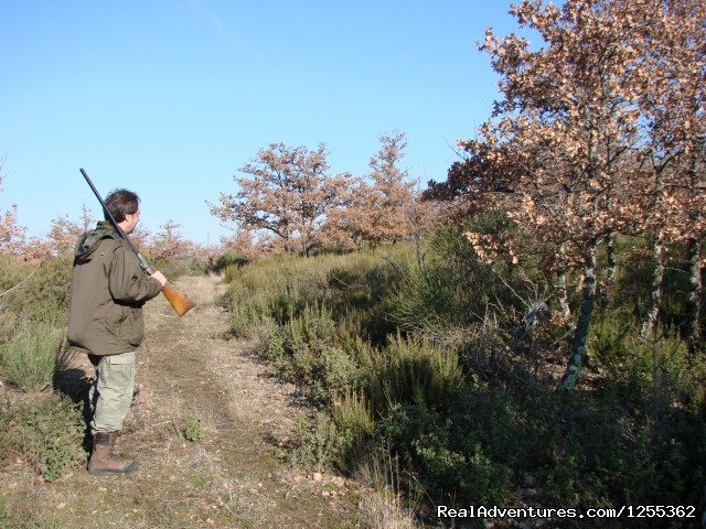 Hunting day at the private reserve in Tuscany - Hunting in Tuscany 'Riserva di Caccia Le Corniole'