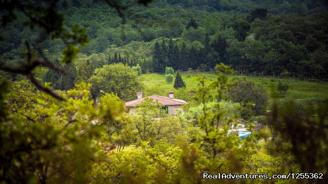 Panoramic view of the Tuscan farmhouse in the reserve
