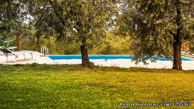 Pool of the farmhouse Le Corniole inside the hunting reserve - Hunting in Tuscany 'Riserva di Caccia Le Corniole'