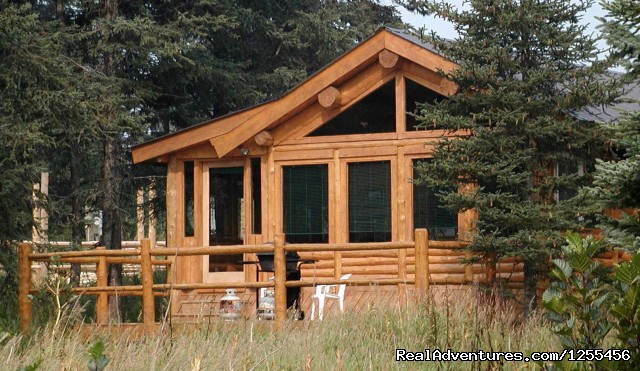 Moose Cabin - Unique Lodging and Exciting Adventures in Alaska