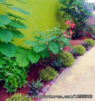 Floral garden - Affordable vacation in Dominica