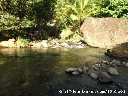 River just 2 minute walk - Affordable vacation in Dominica