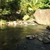 River just 2 minute walk