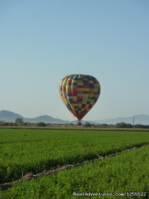 Landing in the agricultural expanse of Avra Valley - Tucson Balloon Rides