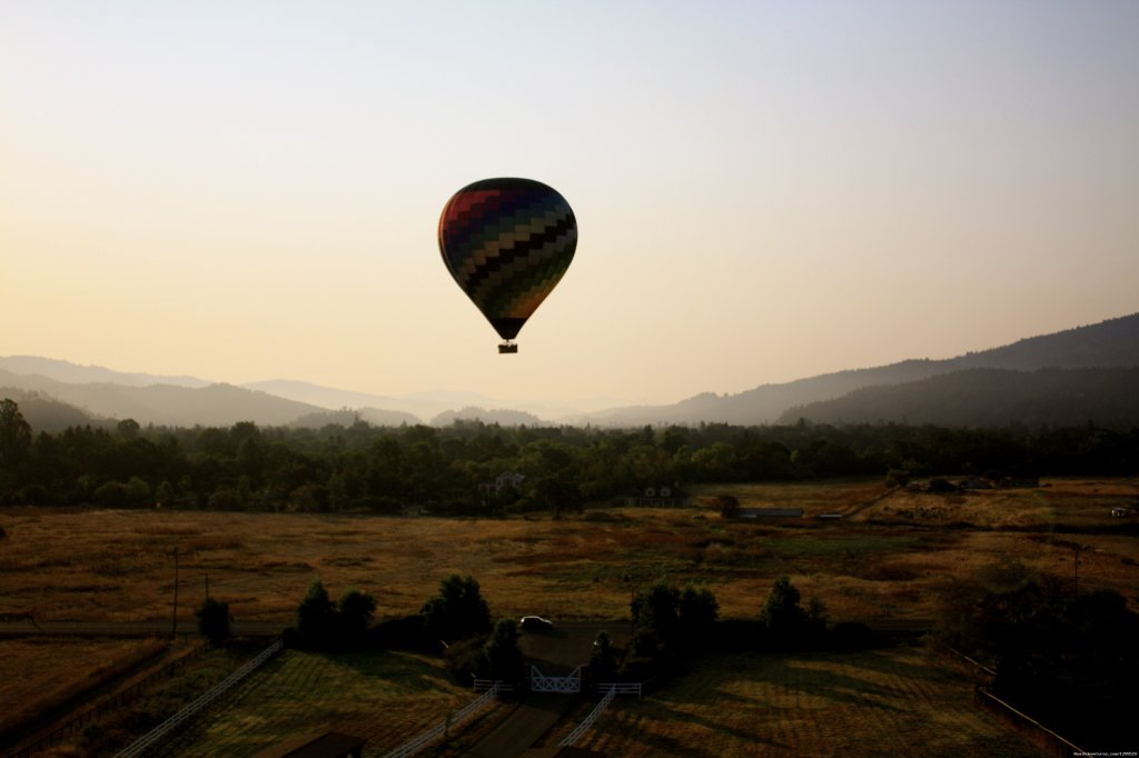 Calistoga Balloons Over Napa Valley at Harvest