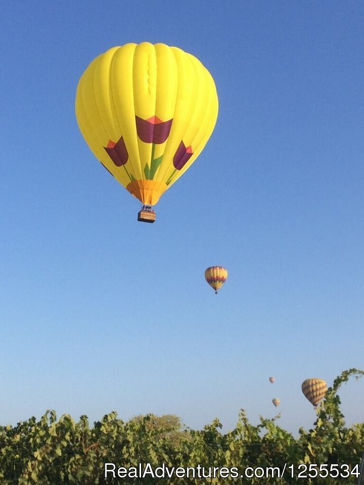 Mimosa over the Vines | Image #3/6 | Napa Valley Balloons