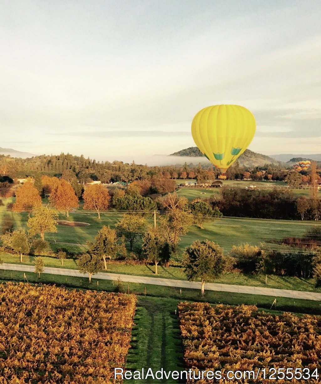 Fall in the Napa Valley | Image #5/6 | Napa Valley Balloons