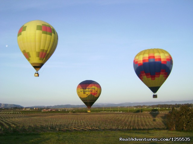 A Grape Escape Hot Air Balloon Adventure Ballooning in Temecula is popular