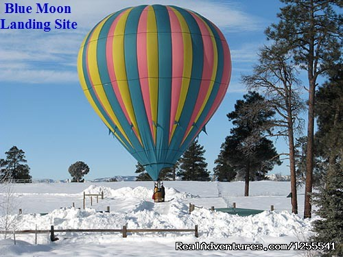 Let It Snow - Wind Wranglers Balloon Company