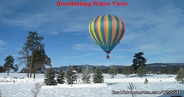 Winter Wonderland - Wind Wranglers Balloon Company