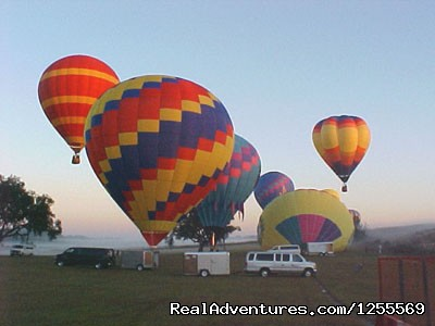 - Painted Horizons Hot Air Balloon Tours