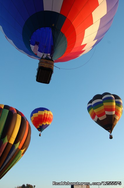 Morning Lift Offs - American Balloon Rides