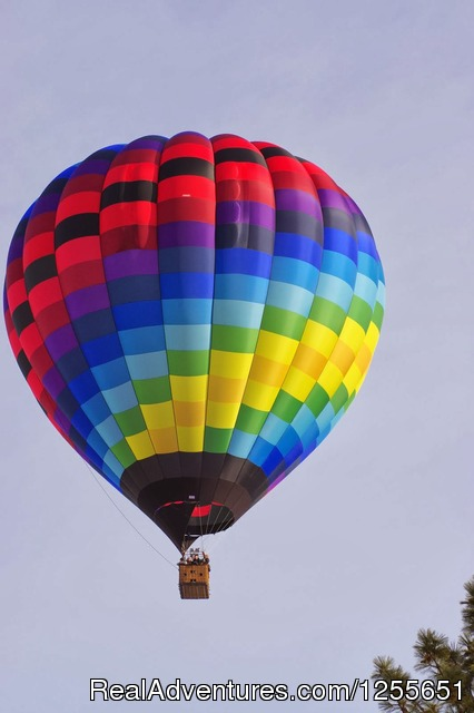 Tyee - Hot Air Balloon Flights in Western Washington