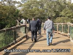 Best of family wildlife holidays to Kenya: Board walk