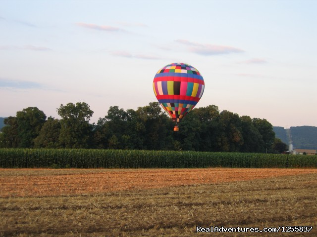 Hovering over a corn field (#5 of 6) - Sky Riders Balloon Team