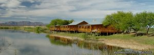Romantic and weekend tours in Africa Pretoria, South Africa Wildlife & Safari Tours