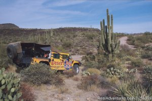 Desert Dog Aguila, Arizona ATV Trips