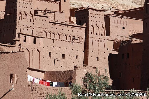 Morocco deep south and berber Culture. - Zebra Adventures Cultural Tours