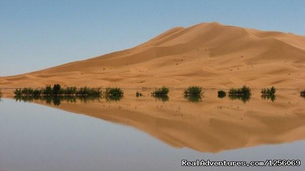 Desert Tours - Zebra Adventures Cultural Tours