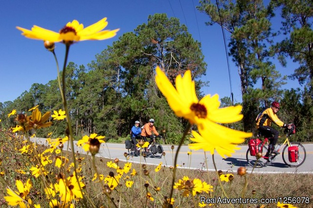 Flowers - Bike Florida 2014 Tour