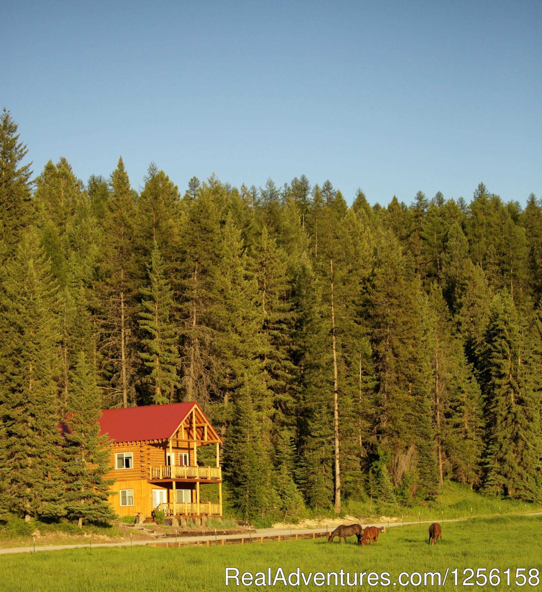 Cabin suites offer a rustic ambiance