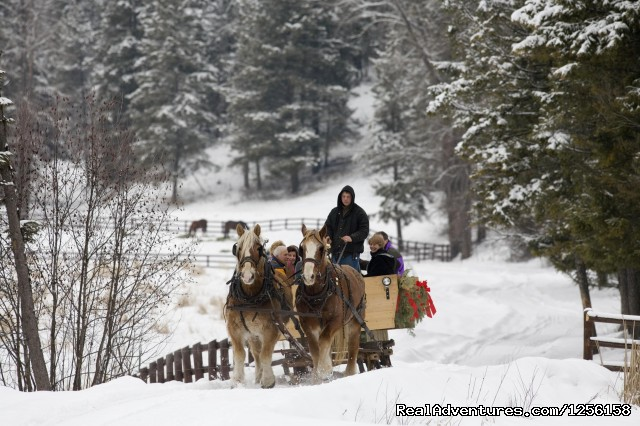 Winter Sleigh Ride - Bar W Guest Ranch
