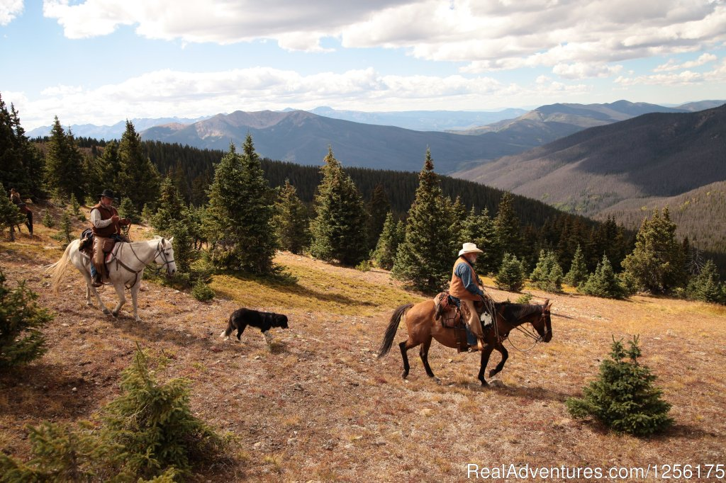 Incredible horseback rides | Image #4/19 | Bar Lazy J Guest Ranch
