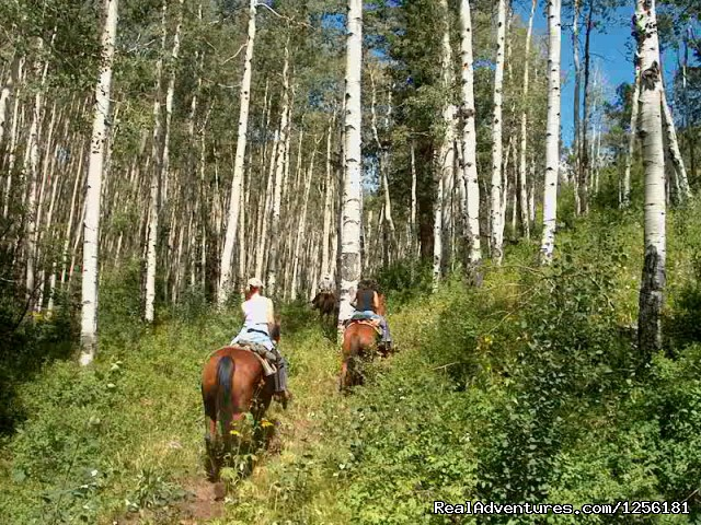 Riding in the aspen - Colorado Trails Ranch, Colorado's Friendliest