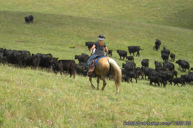 Try your hand at being a real cowgirl or cowboy - Bonanza Creek Guest Ranch