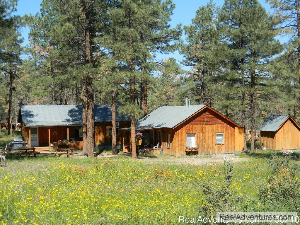 Geronimo Trail Guest Ranch Cabins | Image #2/8 | Geronimo Trail Guest Ranch