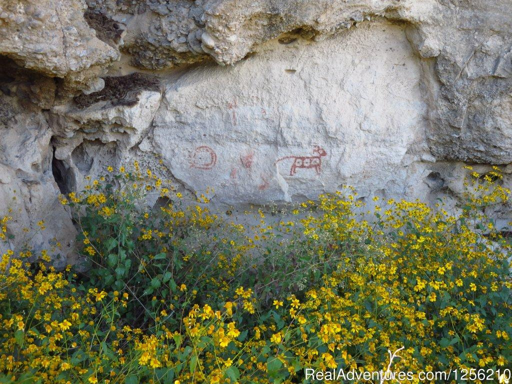 Geronimo Trail Guest Ranch Pictographs | Image #5/8 | Geronimo Trail Guest Ranch