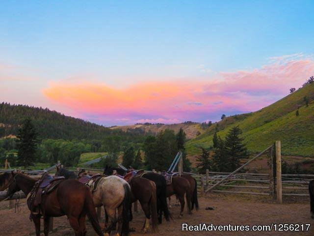 Horses Watch the Sunrise | Image #3/5 | Gros Ventre River Ranch