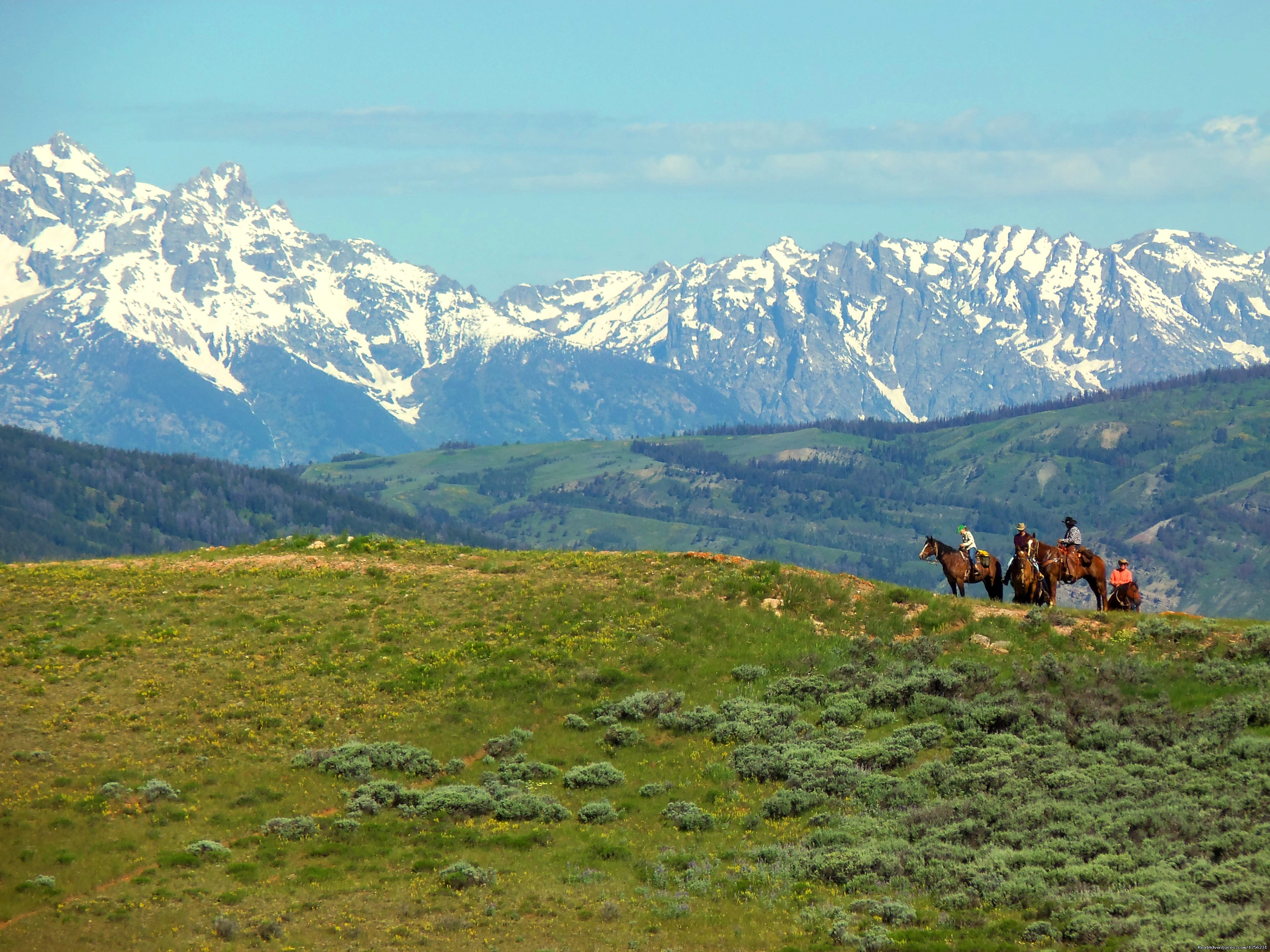 Teton views from one of our rides | Image #2/2 | Red Rock Ranch