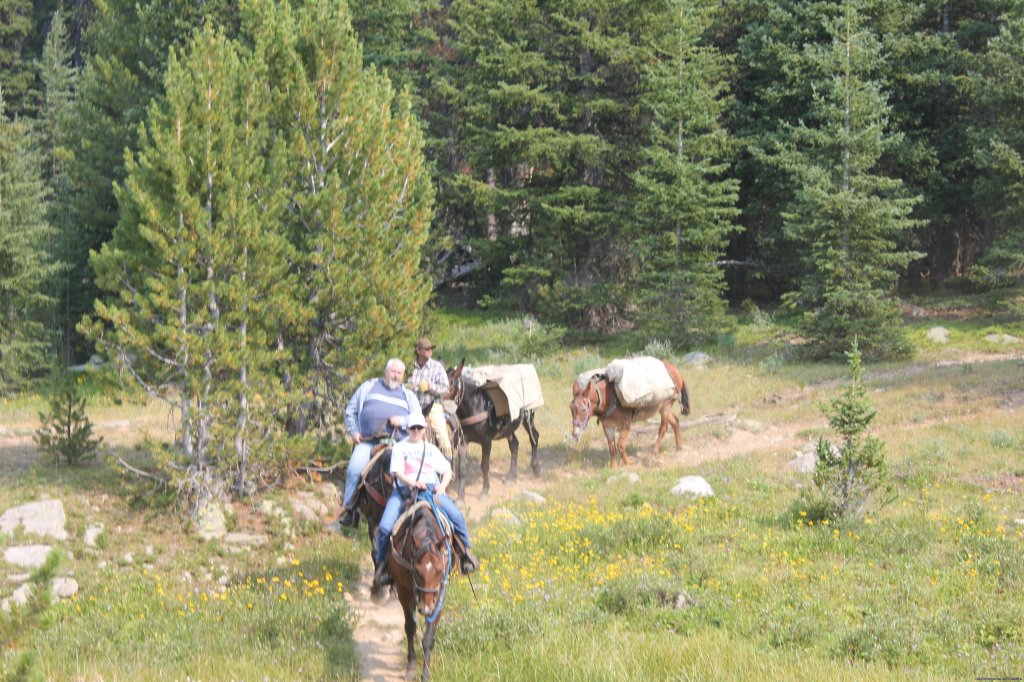Pack trip | Image #19/22 | Mule Shoe Outfitters