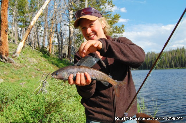Nice Grayling (#4 of 22) - Mule Shoe Outfitters