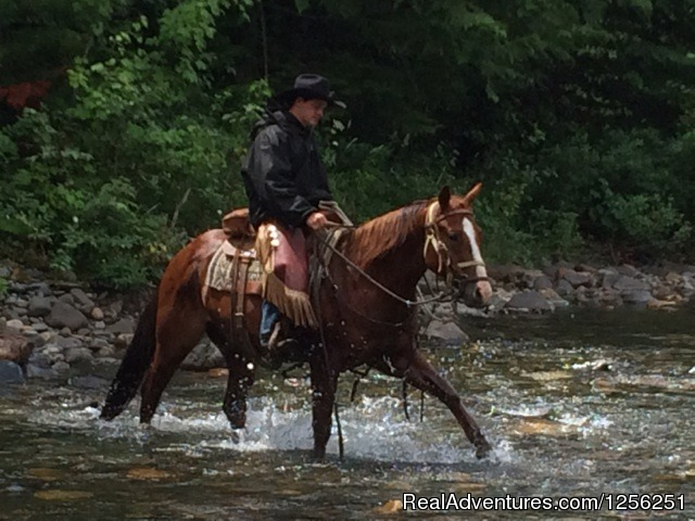 - Western Pleasure Guest Ranch