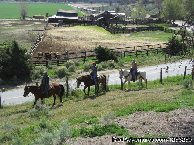 Guided Trail Rides - Rankin Ranch