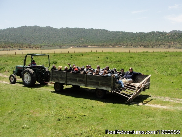 Haywagon Ride - Rankin Ranch