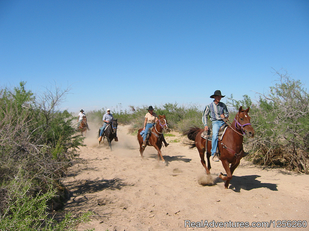Image #5/13 | Stagecoach Trails Guest Ranch