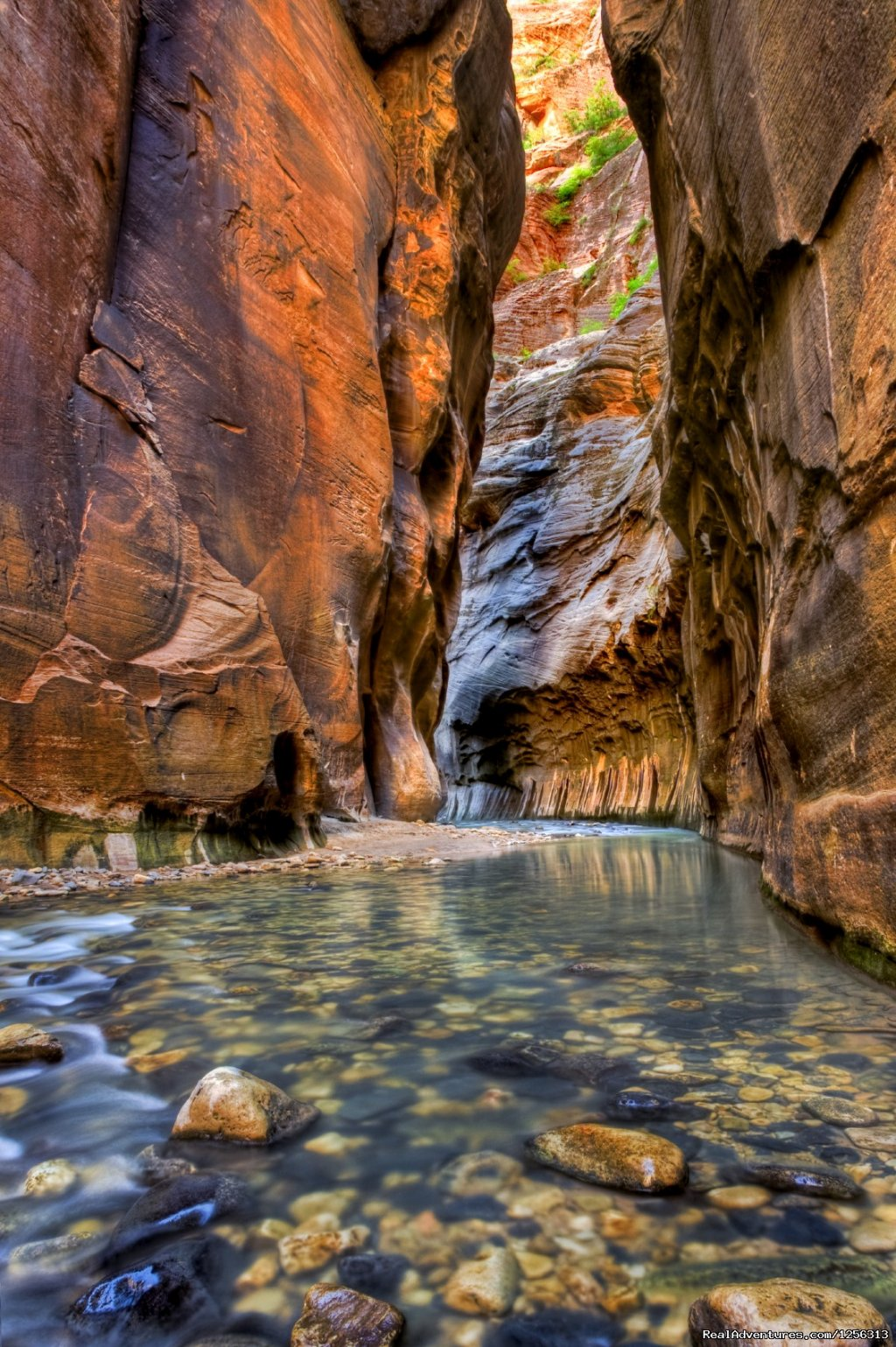 The Narrows, Zion National Park | Image #1/12 | Grand Canyon, Arizona  | Hiking & Trekking | Four Season Guides