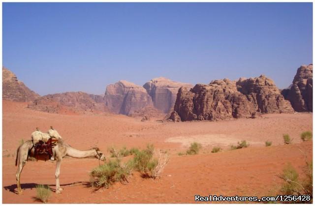 Wadi Rum (#20 of 25) - Jordan Memory Tours