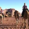 Wadi Rum - Camel ride