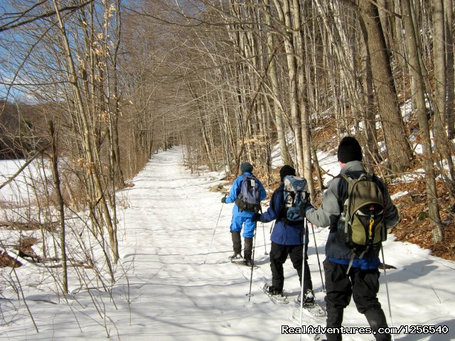 Wonder Walks Snowshoe Tours