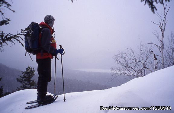 - Wonder Walks Snowshoe Tours